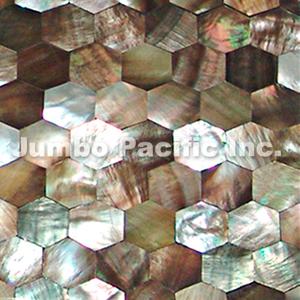 Blacklip & Hammershell Shell Tiles