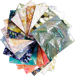 Philippines Shell Tiles Collection